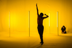 'ALTA' Louise Vanneste / Rising Hors