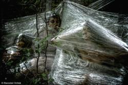 Female bodies in plastic web