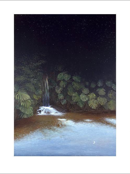 Antonio Peticov - The Garden - 10x de R$550,00 no Cartão