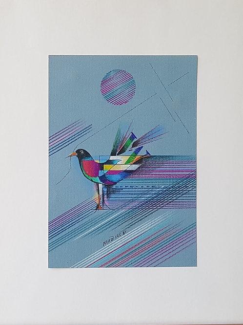 Braz Dias - Pássaro II-  10 x R$ 40,00 no Cartão
