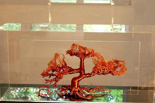 Cris Campana - Baobá Maleta - Parcele em até 10x  no Cartão
