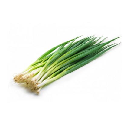 Cebollina (mazo)