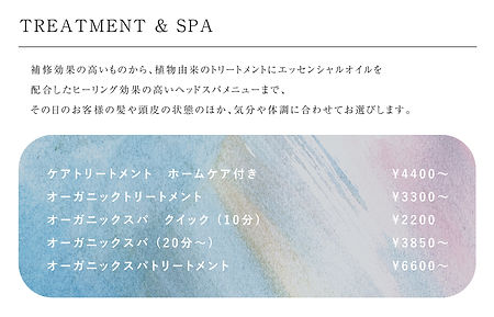 treatment&spa.jpg
