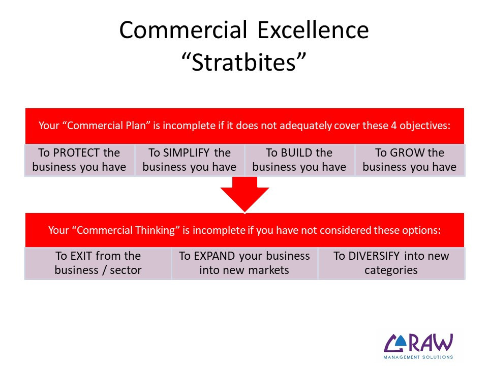 Stratbites - Strategic Objectives for Commercial Excellence