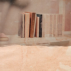 biblioteca copy.jpg