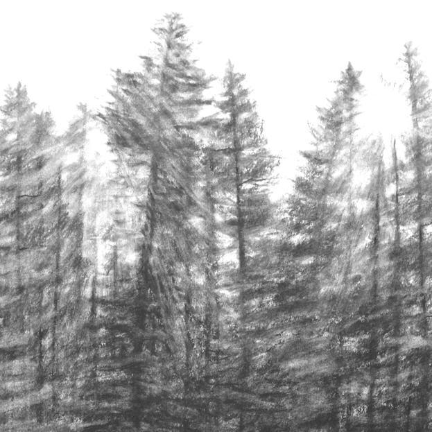 Shifting Trees