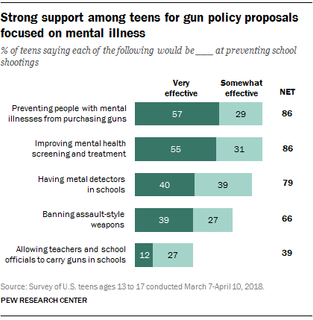 Strong support among teens for gun policy proposals focused on mental illness.