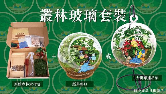 原始森林 DIY 盆景素材包(大) (連自選玻璃瓶)
