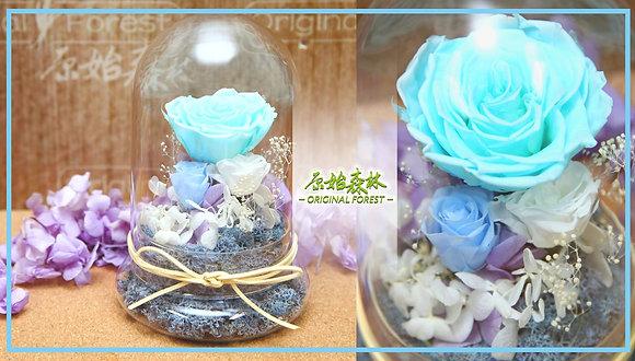 原始森林 粉藍保鮮花盆景(大)