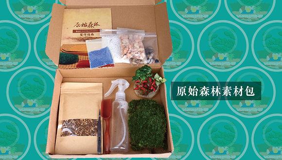 原始森林 DIY 盆景素材包(細) (不含玻璃瓶)
