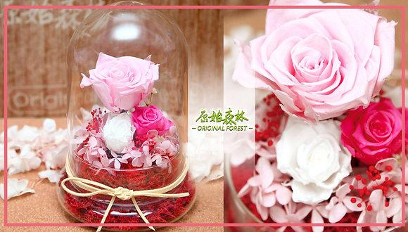 原始森林 深淺粉紅保鮮花盆景(大)