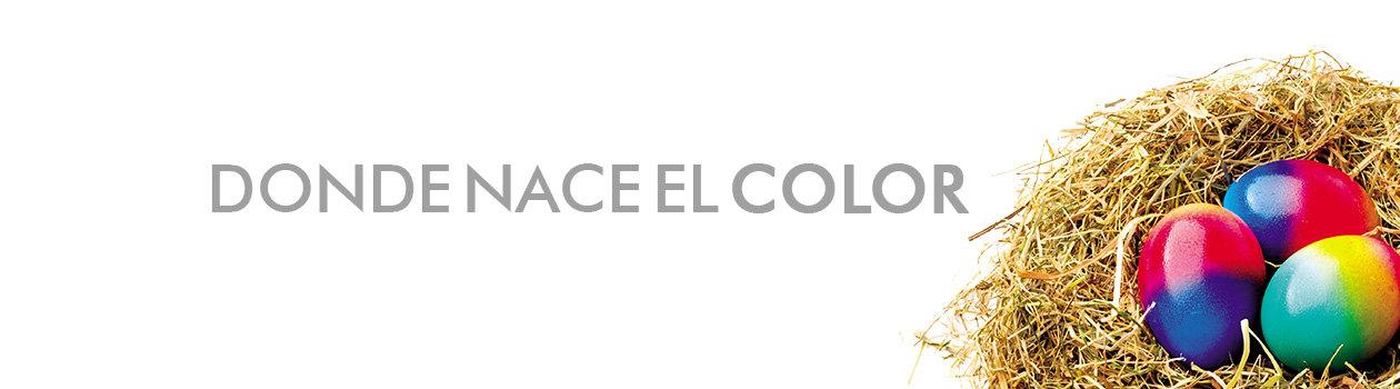Banner-La-Empresa.jpg
