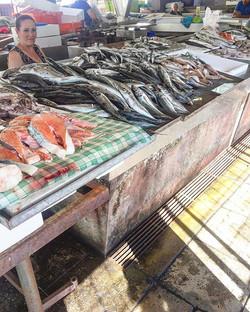 Fresh fish 🐟 peixinho do melhor #Porto #market #fishmarket #sogood #yummy #portuguese #home #portug