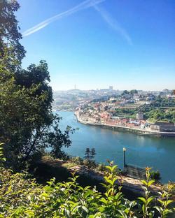 Speechless #breathtaking #douro #riodouro #porto #vilanovadegaia #jardindopalaciodecristal #portugal