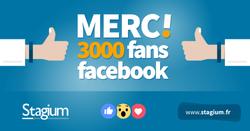 3000_likes_01