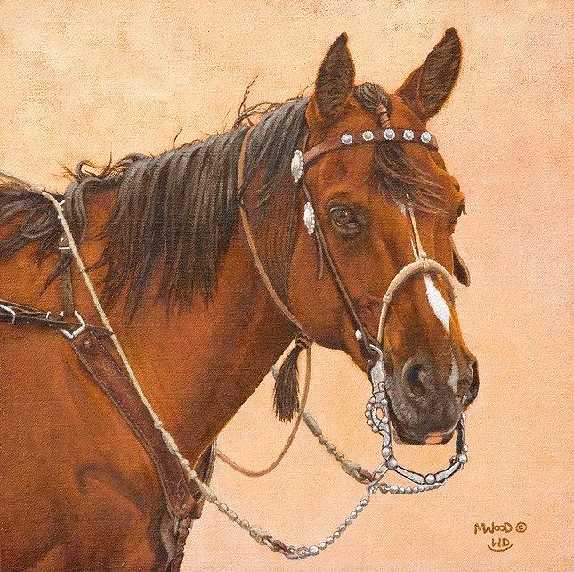 Seasoned Bridle Horse