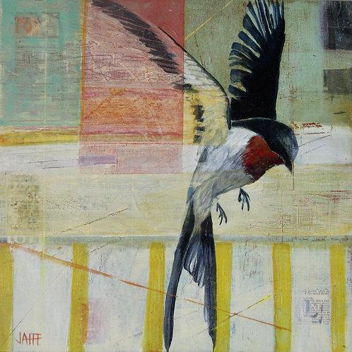 Swallow Flight