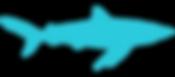 VDO tiburon 2019.png