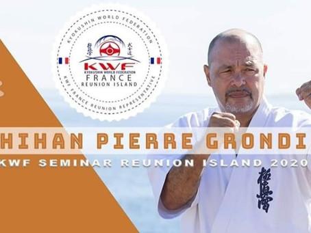 Stage Shihan Pierre Grondin au Dojo