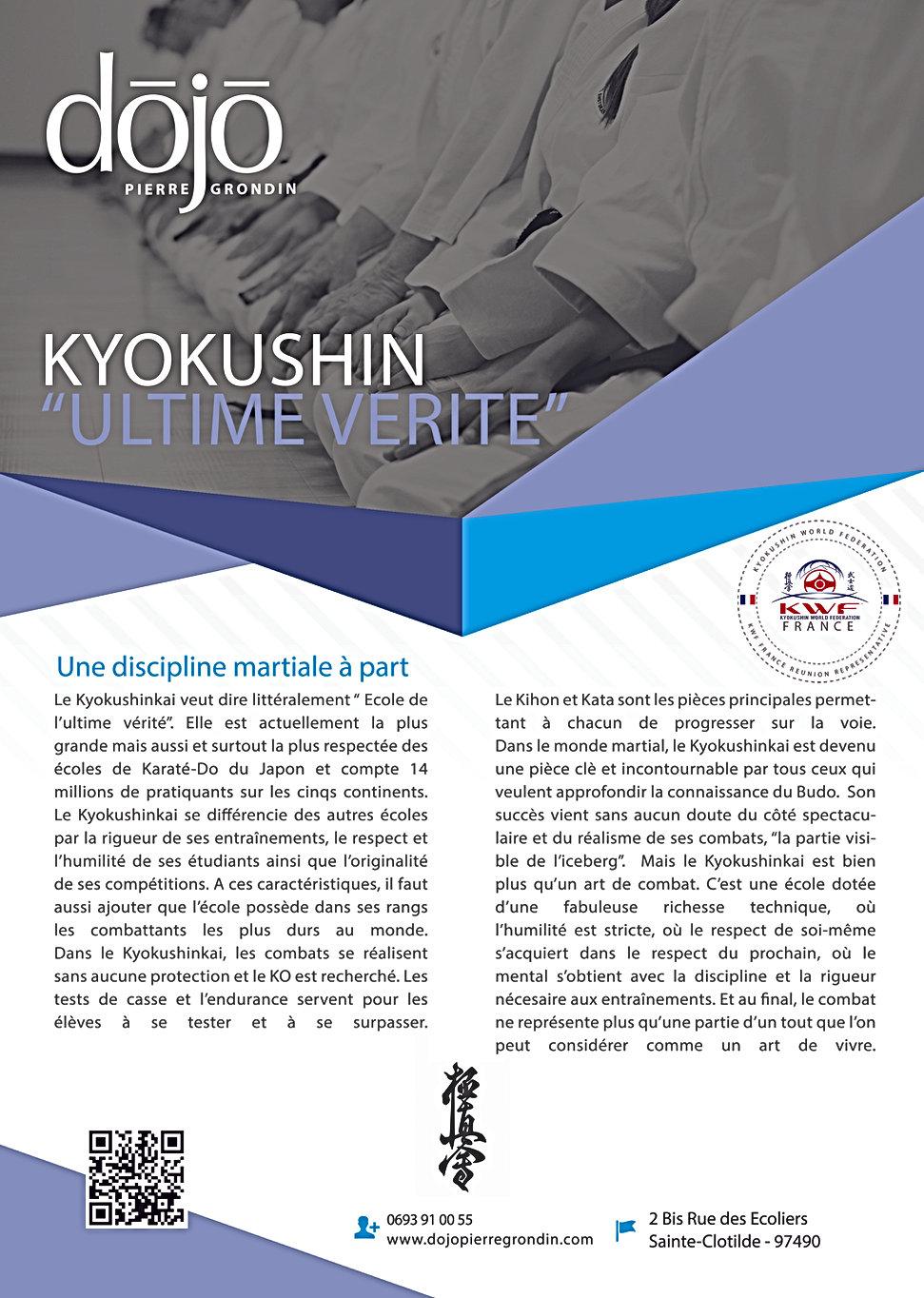 Visuel 3 page Dossier RKH (Kyokushin).jp