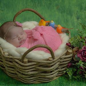 Helena - 5 dias - Ensaio Newborn
