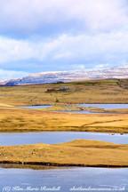 Shetland 34.jpg