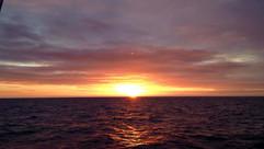 Sunset at Sea, Brixham, Dolphin Watch UK