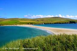Shetland 13.jpg