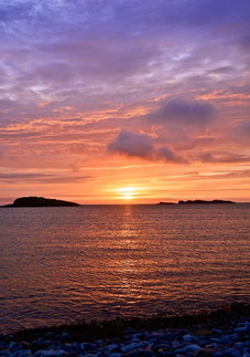 Shetland 40_edited.jpg