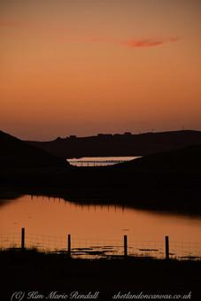 Shetland 27.jpg