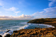 Shetland 41.jpg