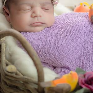 Ensaio Newborn - Eloá 13 dias