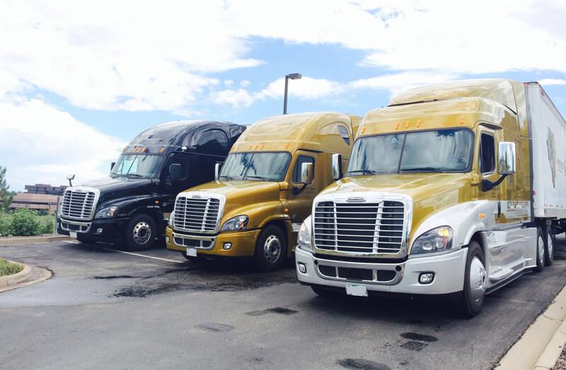 Small Fleet Trucking Company