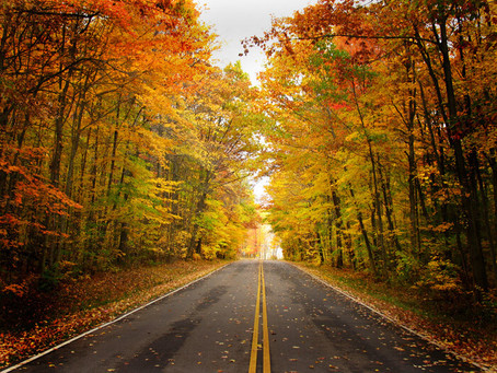 Enjoy Your Thanksgiving While on the Road!