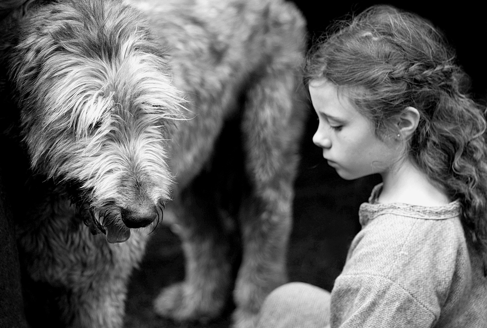 Viking girl, irish wolfhound