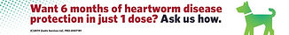 ProHeart-6_Banner-Ad_728x90.jpg