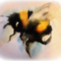 bumble bee by pasha.jpg