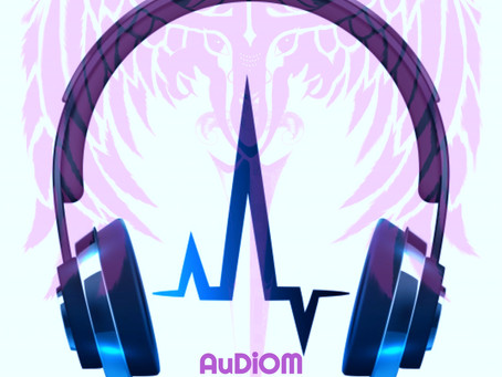 AuDiOM, Music Recording at its best from the Dominartist Project