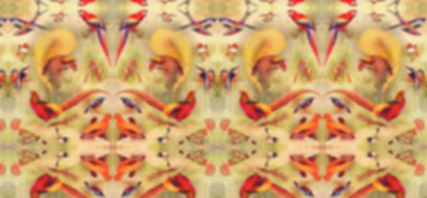 Textile design by Pasha du Valentine, bird orange and yellow