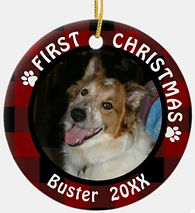 Pet FIRST CHRISTMAS 2-Sided 2-Photo Buffalo Check Ceramic Ornament