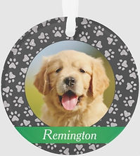 Pet Paw Prints Silver Green Personalized Cat Photo Ornament