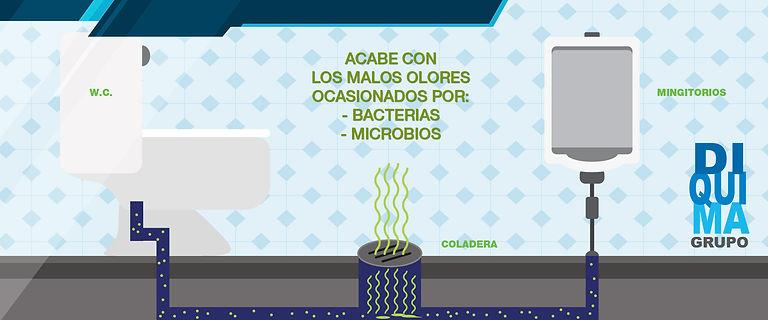 bactereo_4.jpg