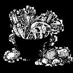 KCFP-logo.png