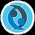 Logo IGC - Sem fundo.png
