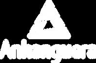 Logos Anhanguera branco.png