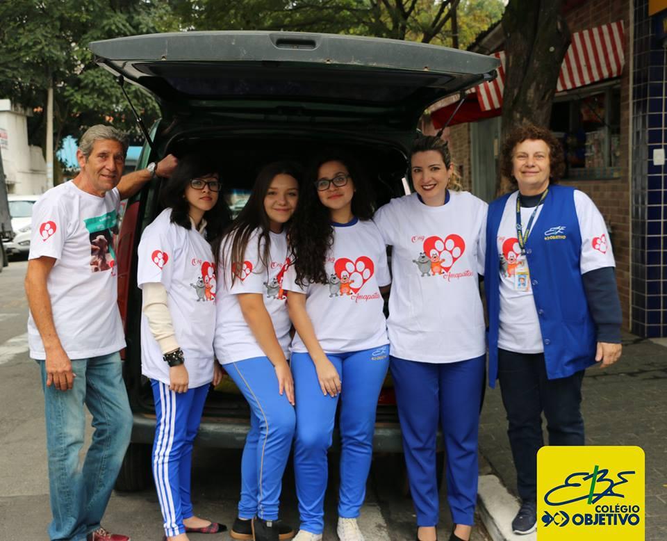 Projeto AmaPatas