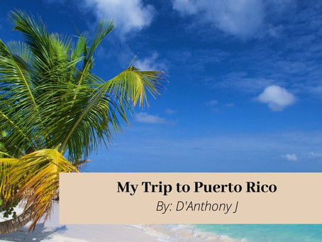 My Trip to Puerto Rico
