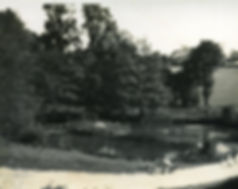 Wells186.jpg