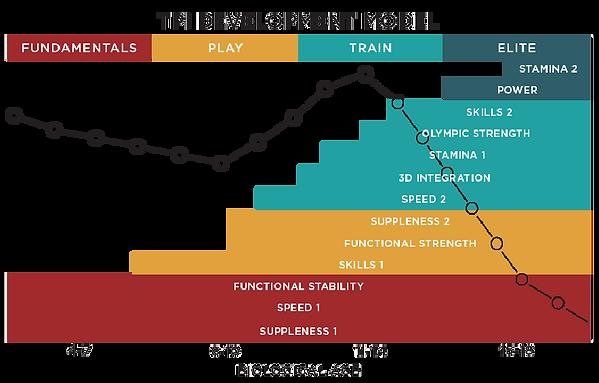 TPI Junior Development Model.png