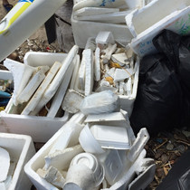 RESEARCH_Beachcleanup2.jpg